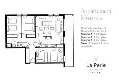 Plan-myosotis-380