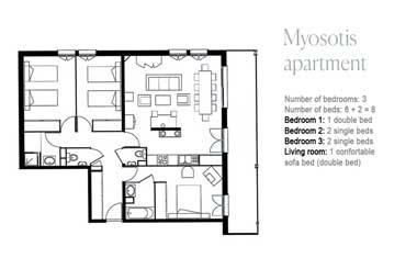 Plan-myosotis-en-380